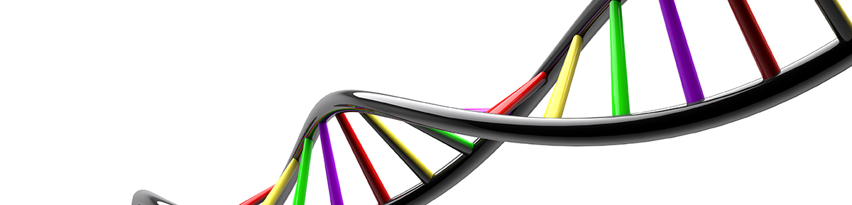 DNA STRAND genetic genome on white